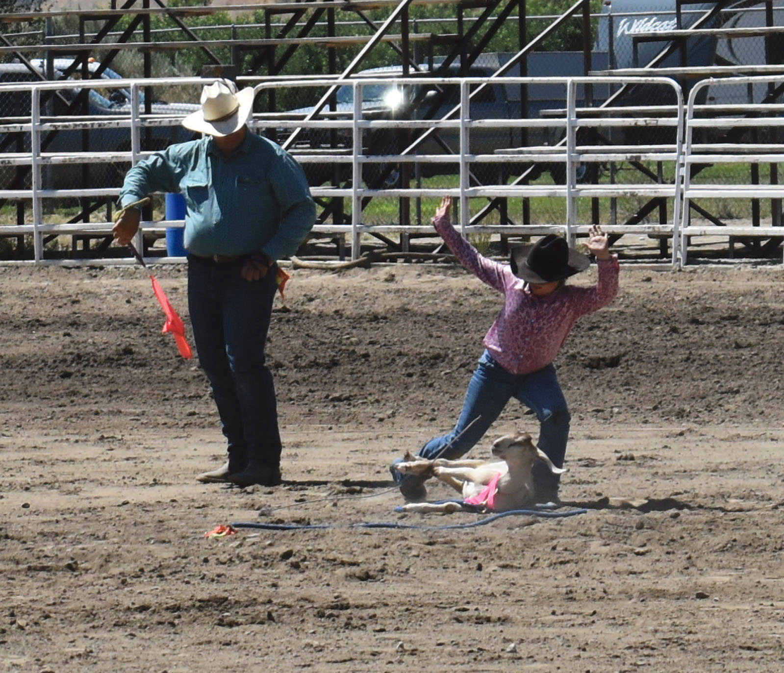 One of the officials makes sure the  cowgirl upends the goat in the correct fashion before stopping the clock.